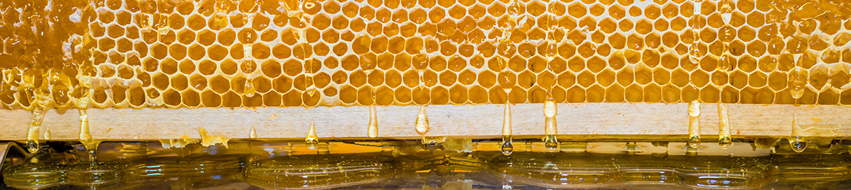 Honey and more